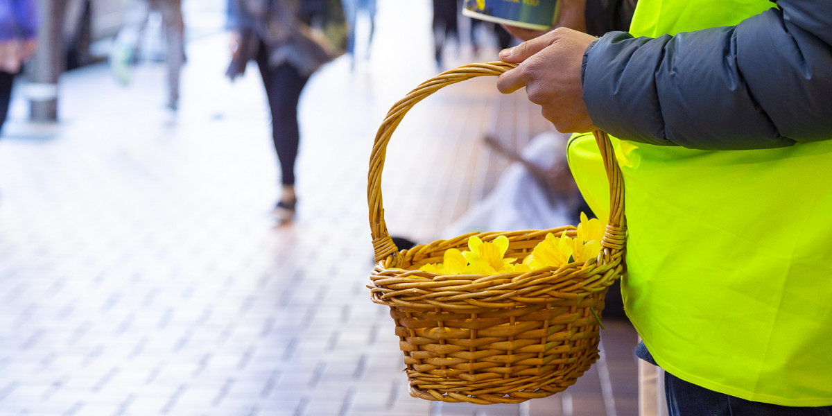 Cancer Society Auckland cancels Daffodil Day street appeal